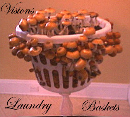 Visions Laundry Basket 4