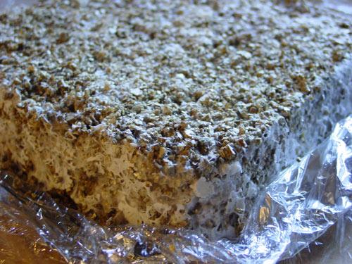 flat cake side 2
