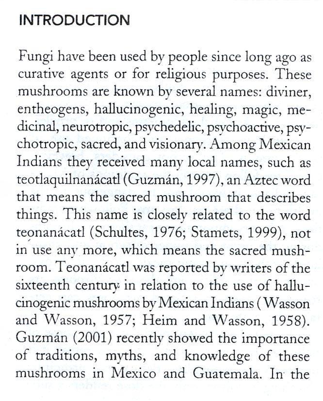 guzmanmedshroomsmexico3
