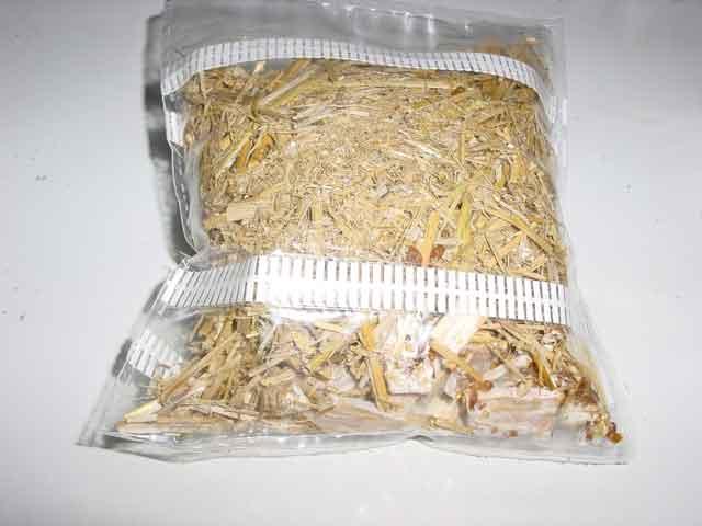 strawbag inoculated 1