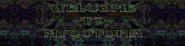 welcomebanner2