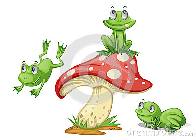 mushroom bday