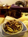 cat_harvest.jpg