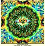 boko_nemo_marijuanamandala[1].jpg