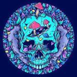mr skull.jpg