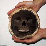 Death-Cap-Mushroom-84416.jpg
