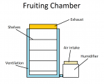 Fruiting Chamber.png