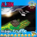 WHolecellium-Psilocybe-alien1.jpg
