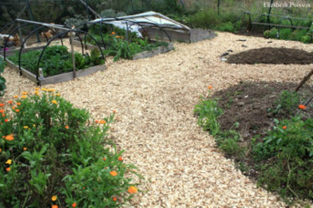 Wood Chips For Landscaping ~ Landscaping wood chips outdoor goods