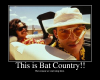 ThisisBatCountry.png