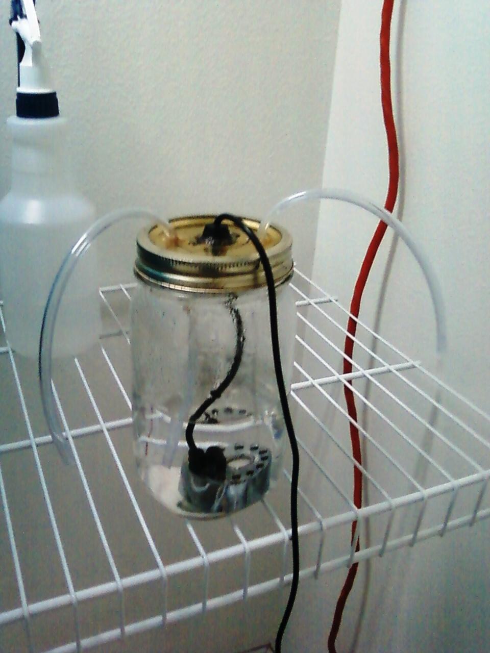 Ultrasonic Foger Humidifier Setup Questions Fungi Magic