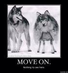 lolwolf.jpg