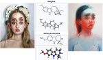 Alex Garant's artwork will have you seeing double, ibogaine and tetrahydroharmine are in the same betacarboline family.PNG