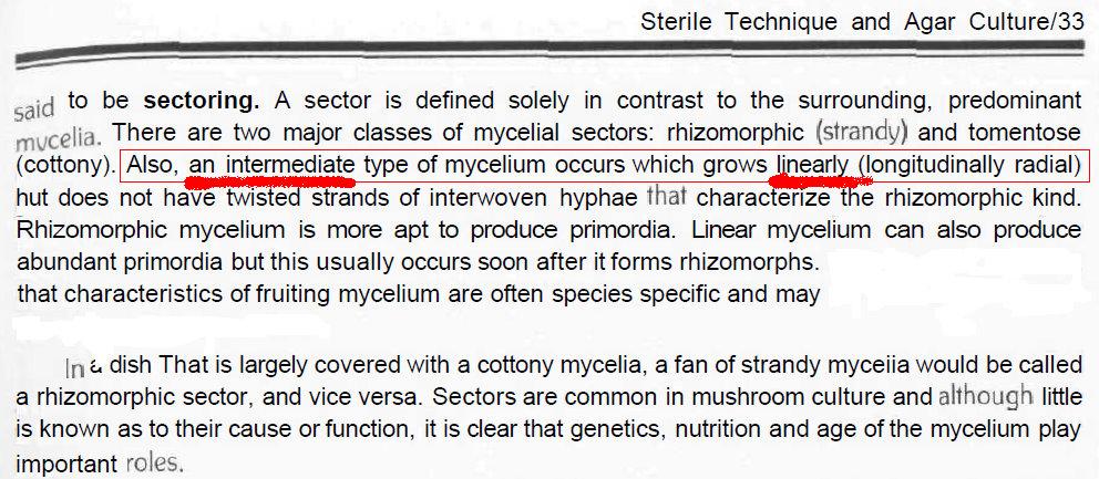 Cloning Vs Sectoring - Fungi: Magic Mushrooms - Mycotopia
