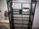 greenhouse 002.jpg