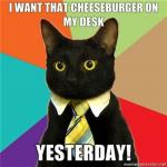 cheezburger_cat.jpg
