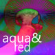 Psilocybe atlantis - last post by Aqua and Red