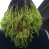 Is this contaminated? - last post by Turtlegirl